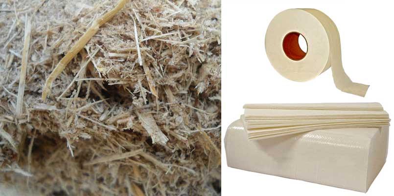 bagasse paper pulp proces
