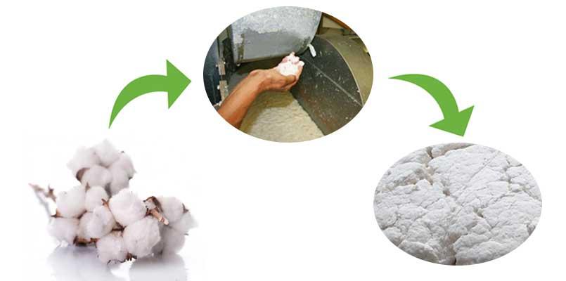 cotton pulp making