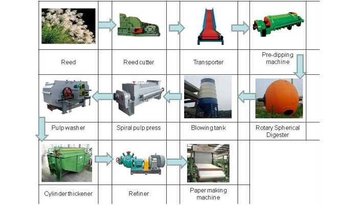 reed pulp production line