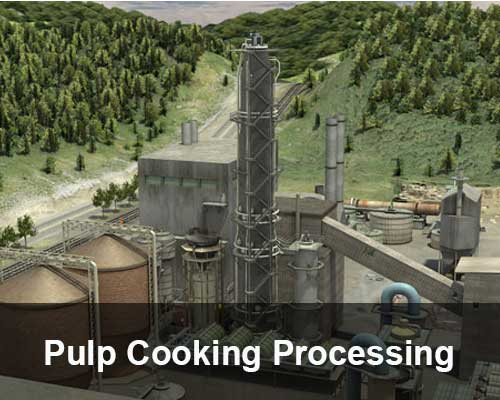 pulp cooking processing