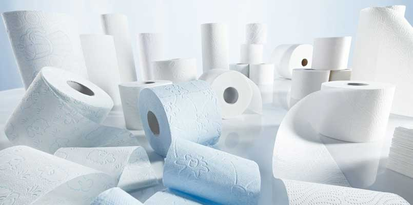 sanitary paper and pulp