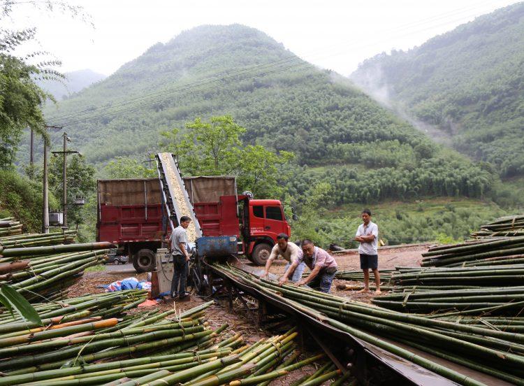 preparation of bamboo pulp making