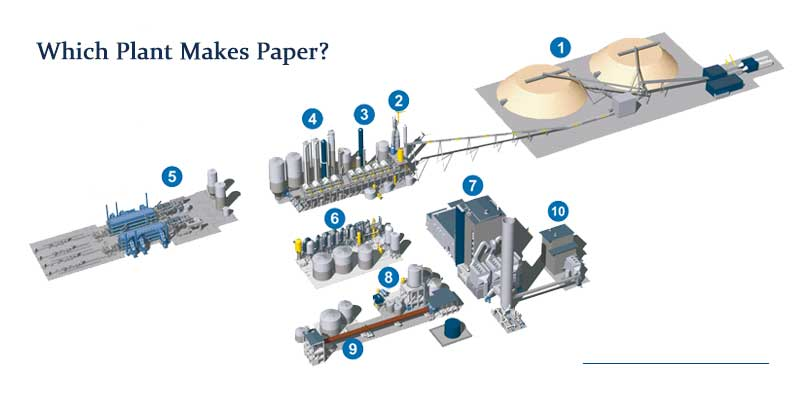 paper pulping plant